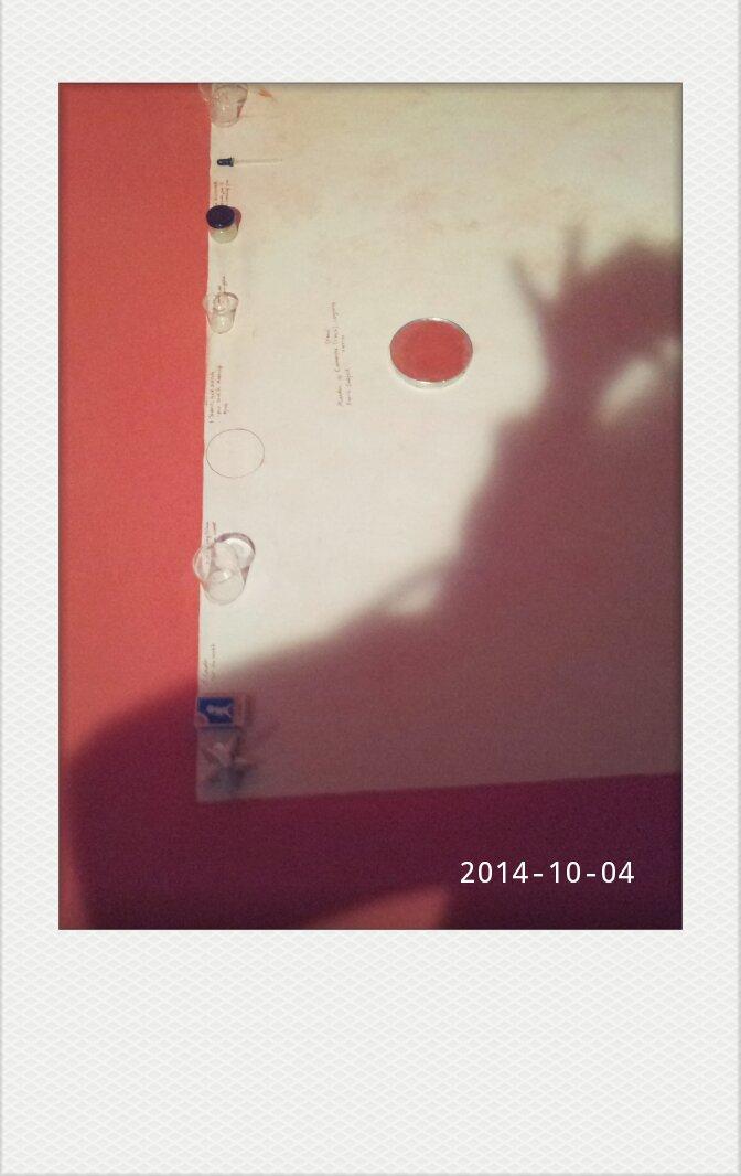 2014-10-04 16.13.32