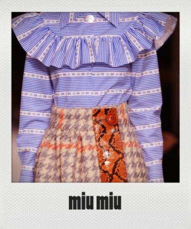 Miu+Miu+Fall+2015+Details+09_T8RE5rkAx_instant