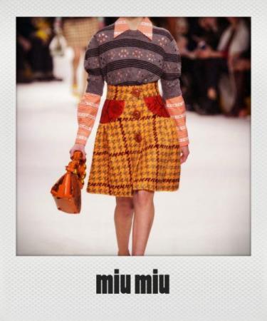Miu+Miu+Fall+2015+Ipl088EYtcKx_instant