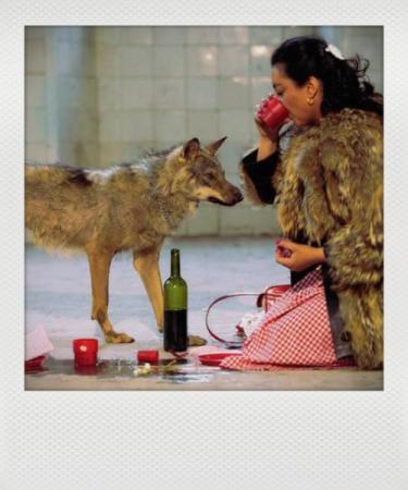 albarracin she wolf_instant